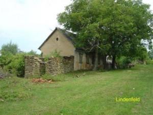 lindenfield