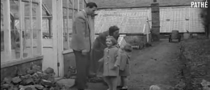 regele mihai sera 1953 fiice