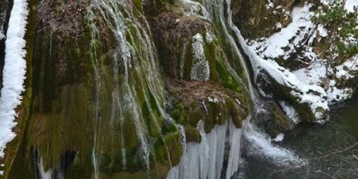 bigar-iarna12