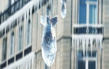 colti de gheată