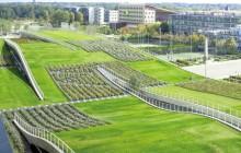acoperisurile verzi din franta