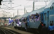 invazia violeta
